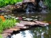 water-feature-01