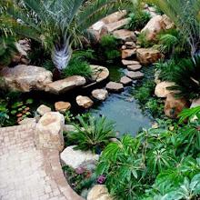 Koi pond specialist landscape gardening services for Koi pond specialist