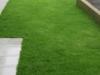 grass-planting-1